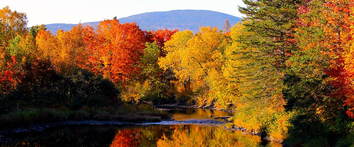 Beautiful fall foliage in Rangeley, Maine